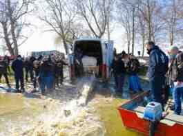 Agrosaveti JVP ''Vode Vojvodine'' poribljavanje 02