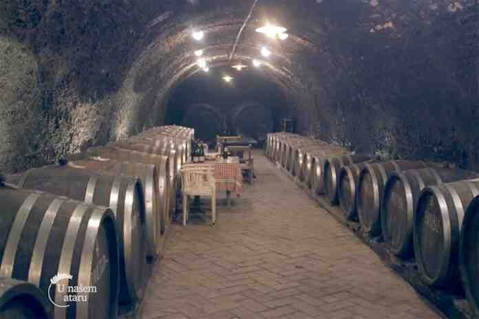 Agrosaveti vinarija Zivanovic 01